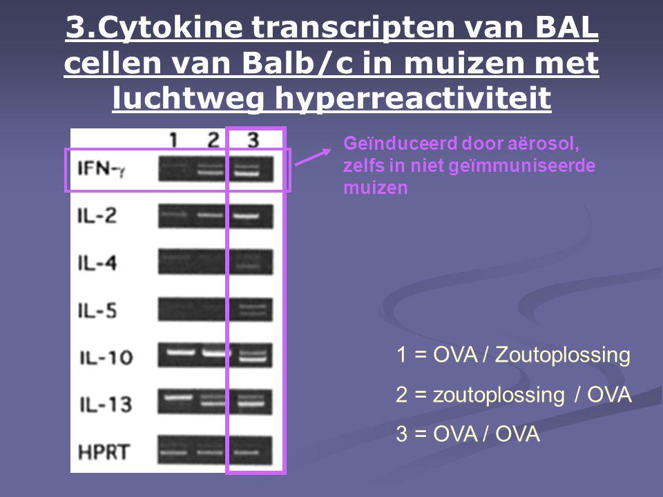 3.Cytokine transcripten van BAL cellen van Balb/c in muizen met luchtweg hyperreactiviteit 1 = OVA / Zoutoplossing 2 = zoutoplossing / OVA 3 = OVA / OVA Geïnduceerd door aërosol, zelfs in niet geïmmuniseerde muizen