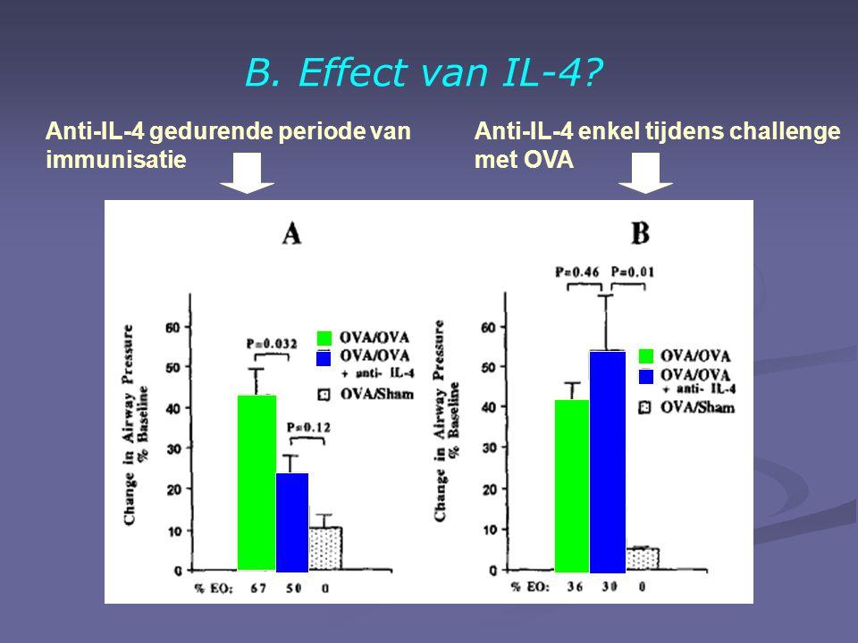B. Effect van IL-4.