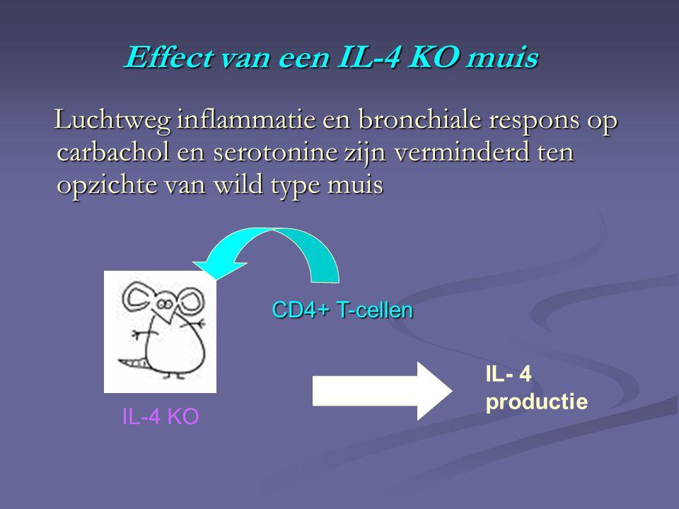 Effect van een IL-4 KO muis Luchtweg inflammatie en bronchiale respons op carbachol en serotonine zijn verminderd ten opzichte van wild type muis Luchtweg inflammatie en bronchiale respons op carbachol en serotonine zijn verminderd ten opzichte van wild type muis IL-4 KO CD4+ T-cellen IL- 4 productie