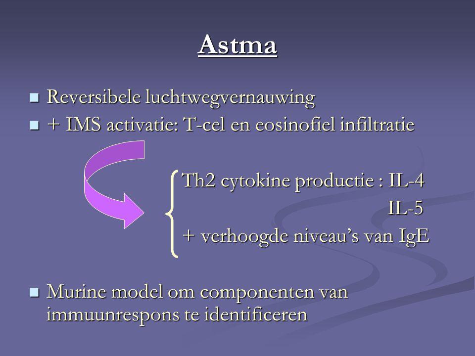 Astma Reversibele luchtwegvernauwing Reversibele luchtwegvernauwing + IMS activatie: T-cel en eosinofiel infiltratie + IMS activatie: T-cel en eosinofiel infiltratie Th2 cytokine productie : IL-4 Th2 cytokine productie : IL-4 IL-5 IL-5 + verhoogde niveau's van IgE + verhoogde niveau's van IgE Murine model om componenten van immuunrespons te identificeren Murine model om componenten van immuunrespons te identificeren