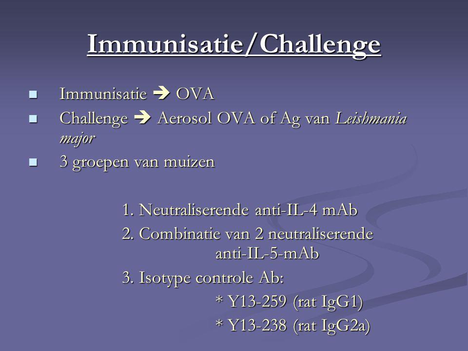 Immunisatie/Challenge Immunisatie  OVA Immunisatie  OVA Challenge  Aerosol OVA of Ag van Leishmania major Challenge  Aerosol OVA of Ag van Leishmania major 3 groepen van muizen 3 groepen van muizen 1.