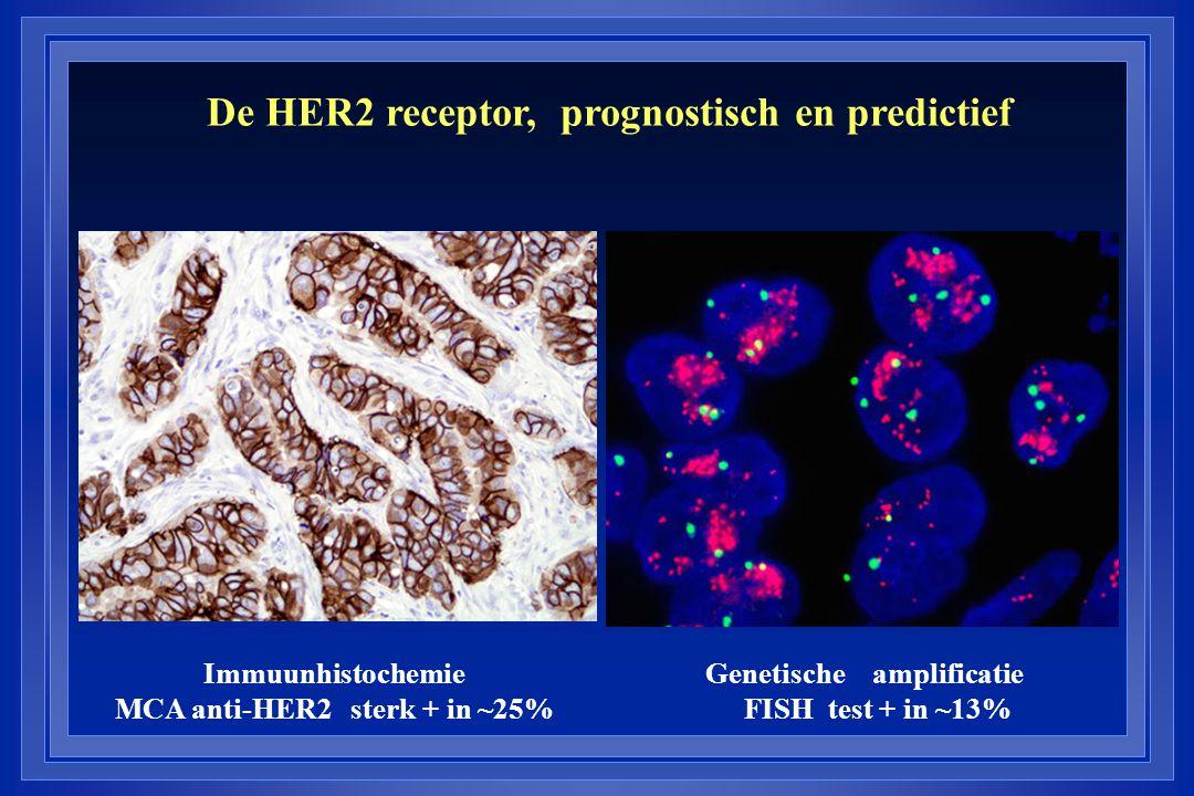 De HER2 receptor, prognostisch en predictief Immuunhistochemie Genetische amplificatie MCA anti-HER2 sterk + in ~25% FISH test + in ~13%
