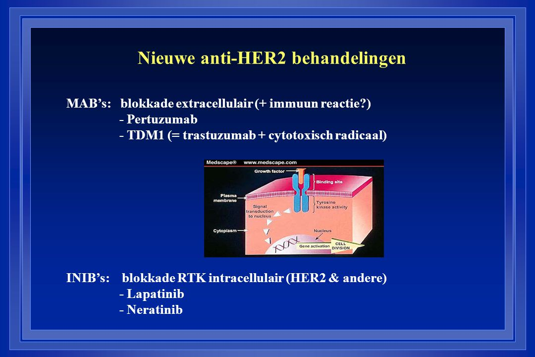 Nieuwe anti-HER2 behandelingen MAB's: blokkade extracellulair (+ immuun reactie?) - Pertuzumab - TDM1 (= trastuzumab + cytotoxisch radicaal) INIB's: blokkade RTK intracellulair (HER2 & andere) - Lapatinib - Neratinib
