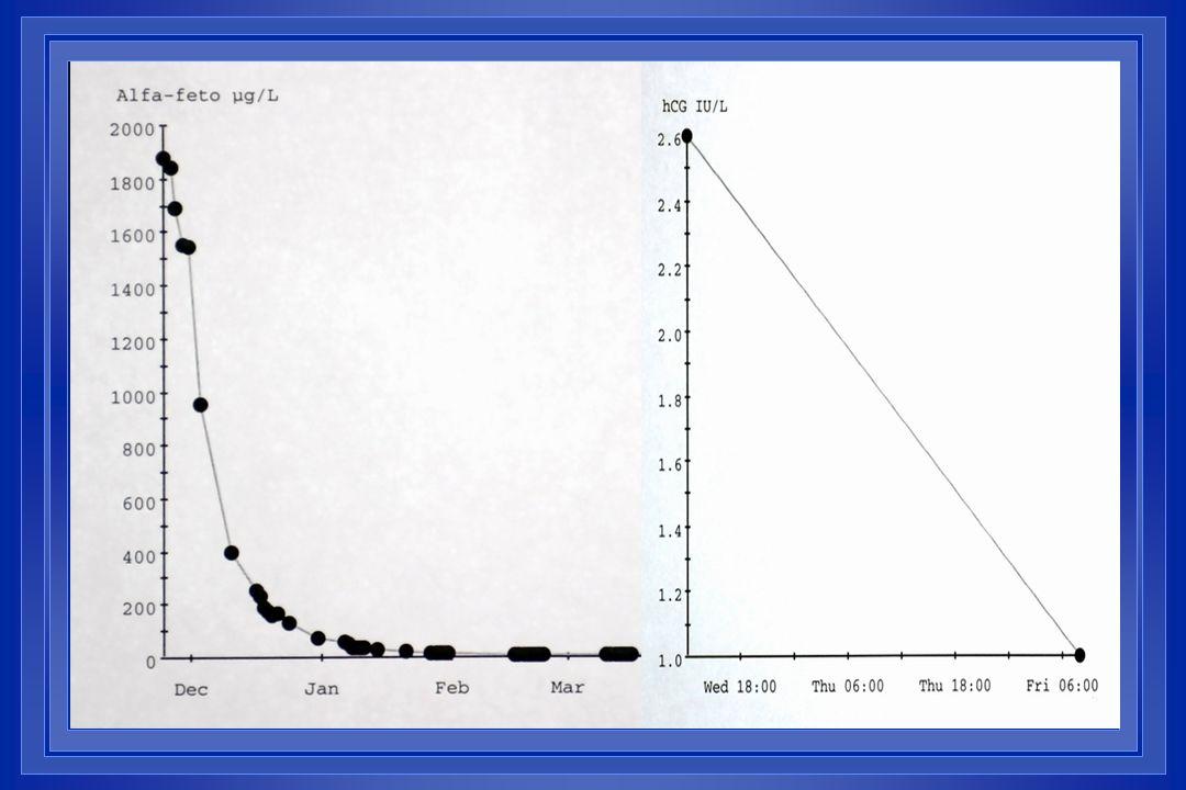 DZH 540220V112 – Besluitvorming adjuvante therapie 51 jaar, postmenopausaal, zelf ontdekte tumor van de linkerborst, geen macrometastasen.