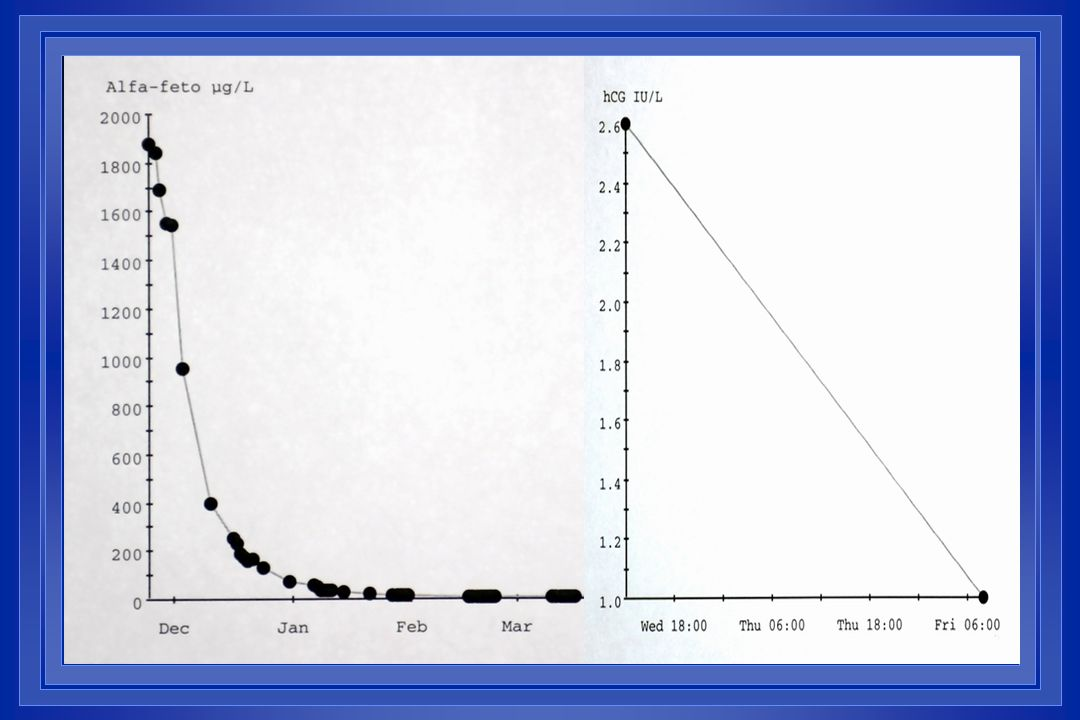 Generation of compound First Second Third Anti-Aromatase Agents by Generation Nonsteroidal Inhibitors Aminoglutethimide (Orimeten) Fadrozole Anastrozole, Letrozole (Arimidex) (Femara) Steroidal Inactivators Testolactone (Teslac) Formestane (Lentaron) Exemestane (Aromasin)