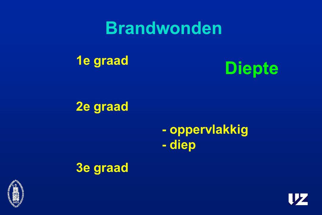Brandwonden 1e graad 2e graad - oppervlakkig - diep 3e graad Diepte