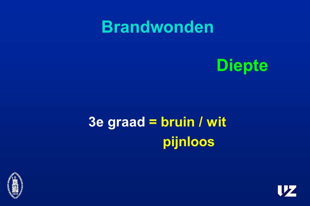 Brandwonden Diepte 3e graad = bruin / wit pijnloos