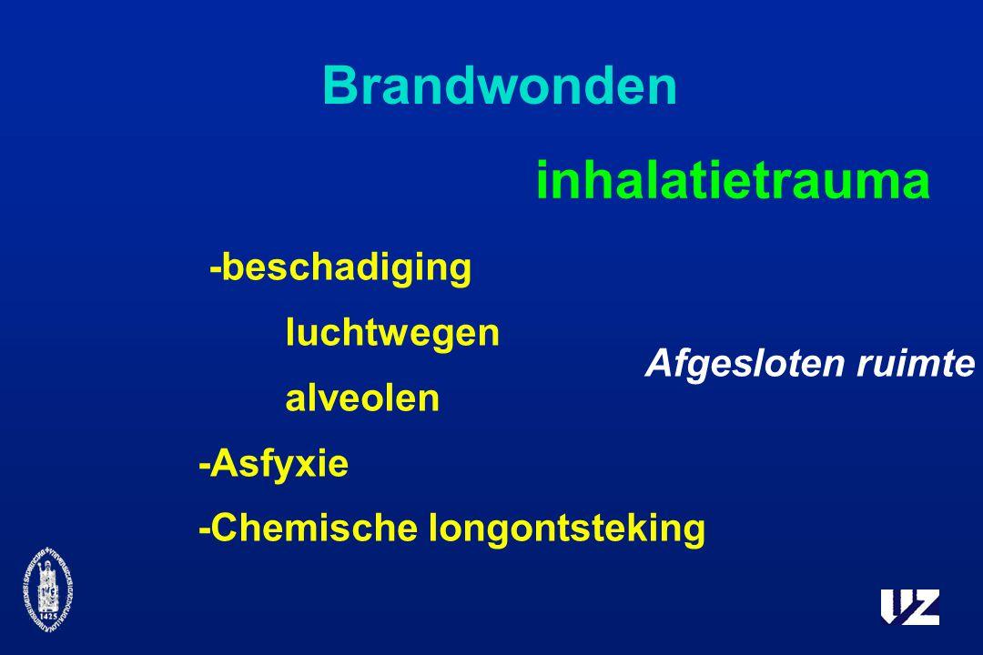 Brandwonden inhalatietrauma -beschadiging luchtwegen alveolen -Asfyxie -Chemische longontsteking Afgesloten ruimte