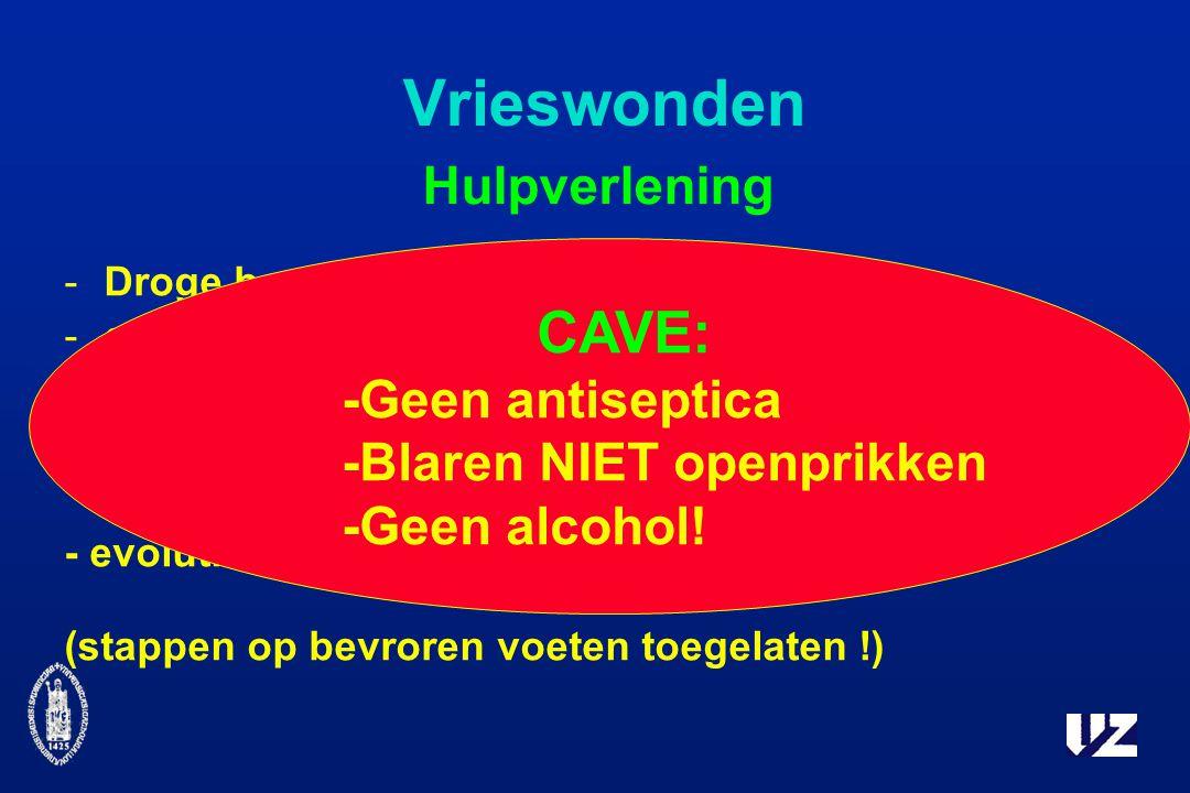 Vrieswonden Hulpverlening -Droge beschutte plaats -geleidelijk opwarmen (40 - 42°) - nadien bloot laten - evolutie afwachten (stappen op bevroren voeten toegelaten !) CAVE: -Geen antiseptica -Blaren NIET openprikken -Geen alcohol!