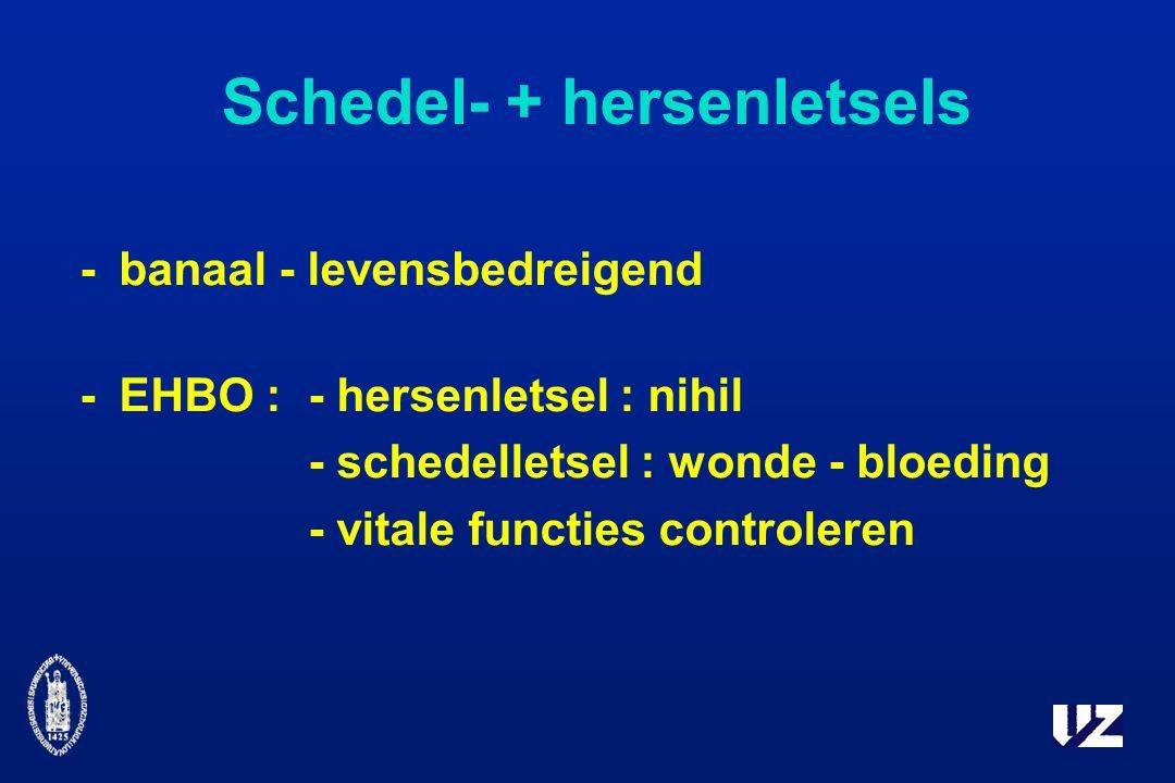 Schedel- + hersenletsels -banaal - levensbedreigend -EHBO :- hersenletsel : nihil - schedelletsel : wonde - bloeding - vitale functies controleren