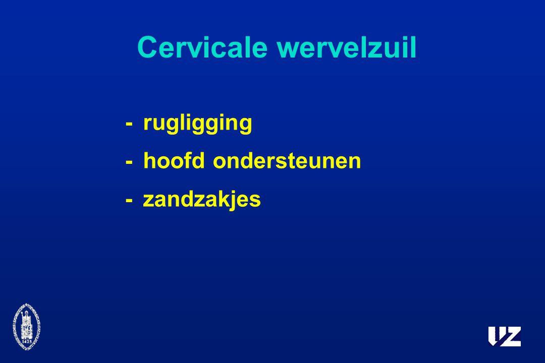 Cervicale wervelzuil -rugligging -hoofd ondersteunen -zandzakjes