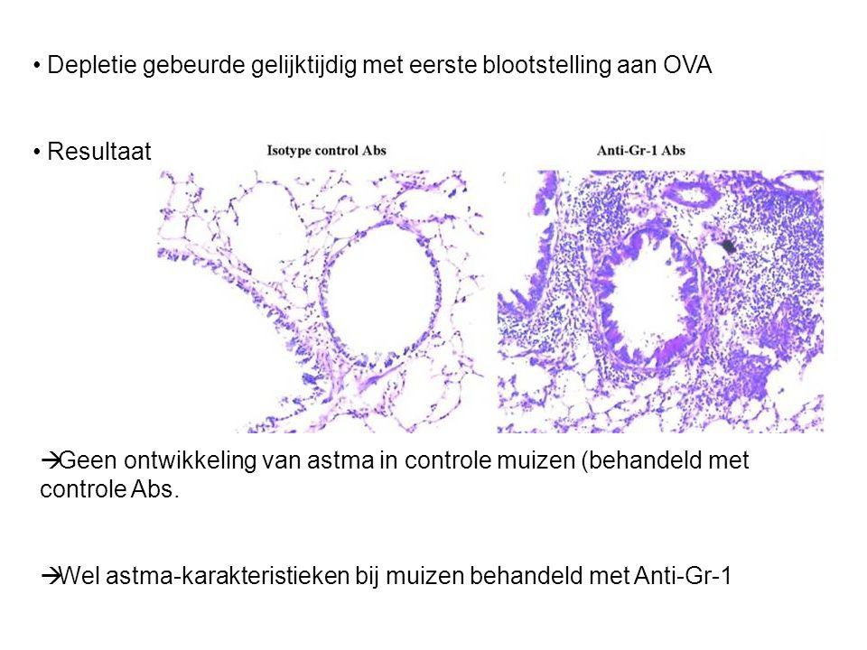 Depletie gebeurde gelijktijdig met eerste blootstelling aan OVA Resultaat :  Geen ontwikkeling van astma in controle muizen (behandeld met controle Abs.