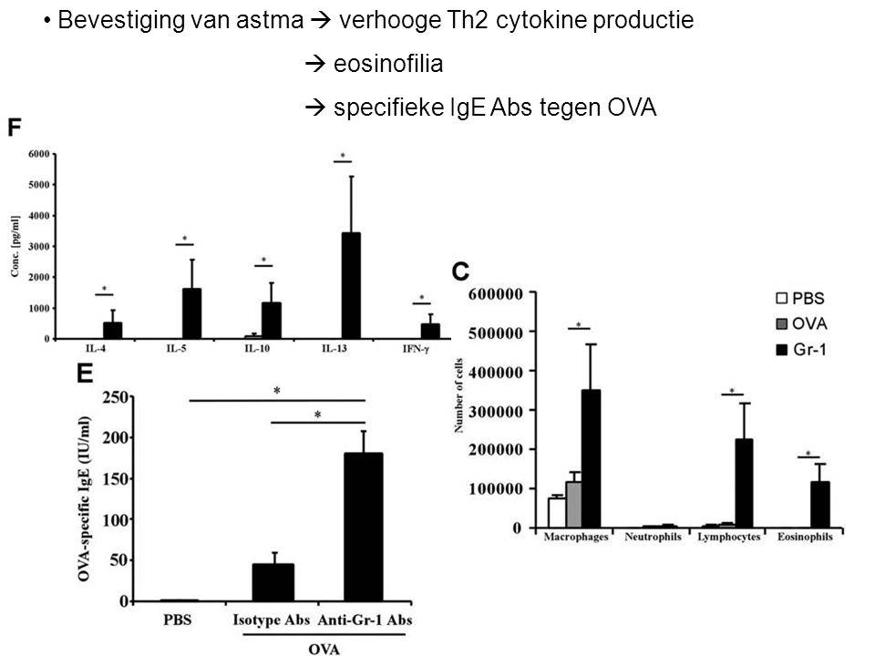 Bevestiging van astma  verhooge Th2 cytokine productie  eosinofilia  specifieke IgE Abs tegen OVA