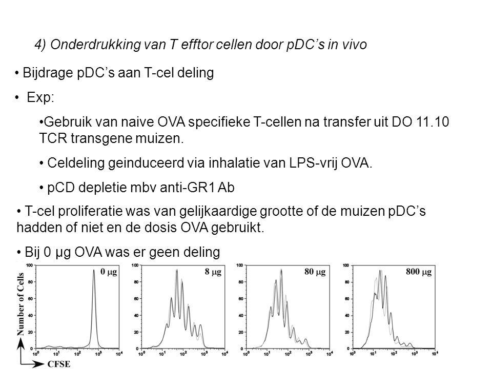 4) Onderdrukking van T efftor cellen door pDC's in vivo Bijdrage pDC's aan T-cel deling Exp: Gebruik van naive OVA specifieke T-cellen na transfer uit DO 11.10 TCR transgene muizen.