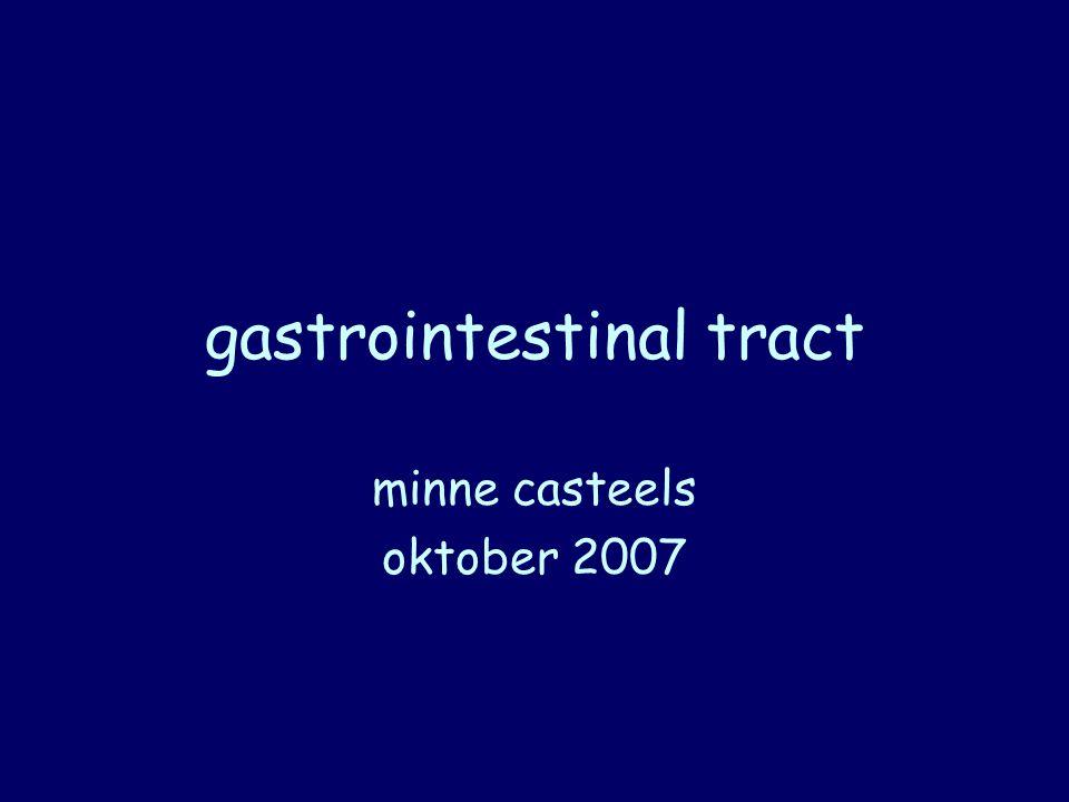 gastrointestinal tract minne casteels oktober 2007