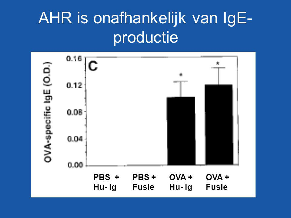 AHR is onafhankelijk van IgE- productie PBS + Hu- Ig PBS + Fusie OVA + Hu- Ig OVA + Fusie