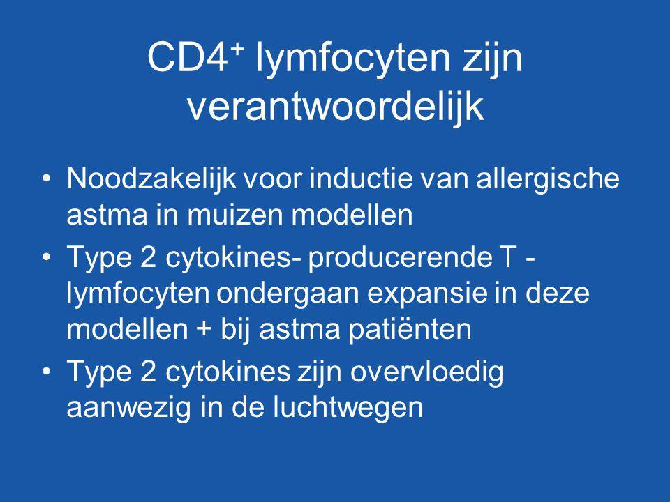 CD4 + lymfocyten zijn verantwoordelijk Noodzakelijk voor inductie van allergische astma in muizen modellen Type 2 cytokines- producerende T - lymfocyt