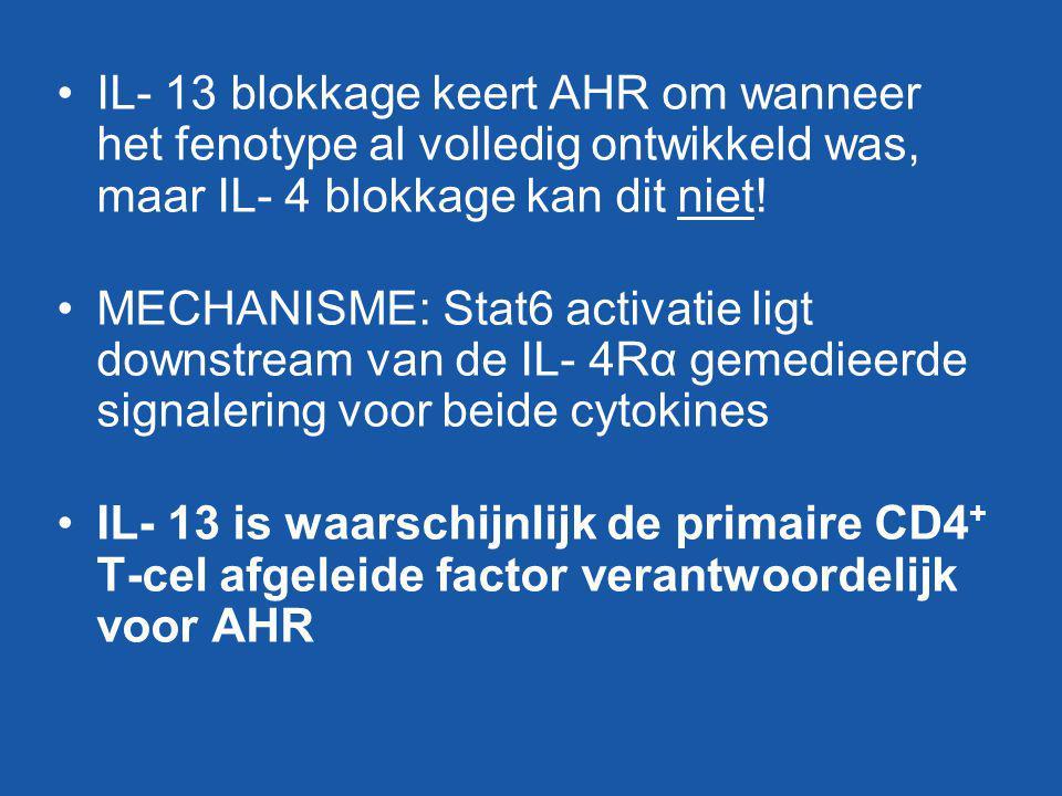 IL- 13 blokkage keert AHR om wanneer het fenotype al volledig ontwikkeld was, maar IL- 4 blokkage kan dit niet! MECHANISME: Stat6 activatie ligt downs