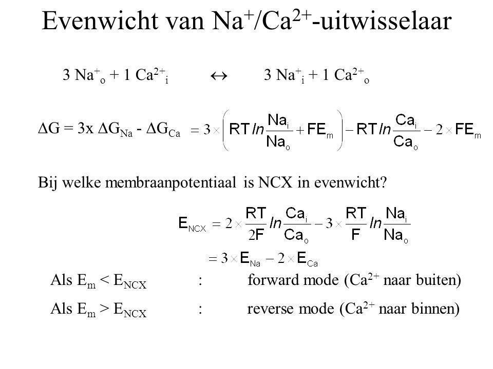 SR/ERgolgi 3 Na + o + 1 Ca 2+ i  3 Na + i + 1 Ca 2+ o  G = 3x  G Na -  G Ca Bij welke membraanpotentiaal is NCX in evenwicht? Evenwicht van Na + /