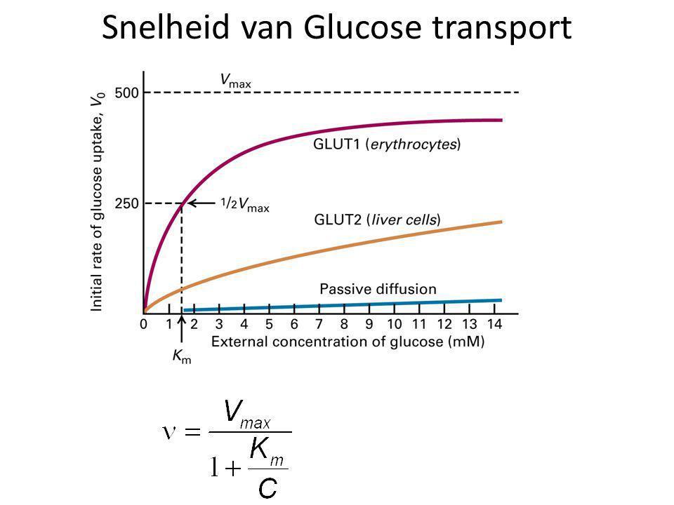 Snelheid van Glucose transport