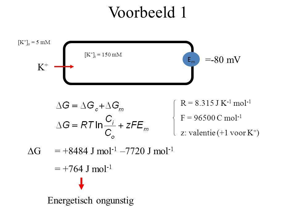 Voorbeeld 1 K+K+ EmEm [K + ] i = 150 mM [K + ] o = 5 mM =-80 mV R = 8.315 J K -1 mol -1 F = 96500 C mol -1 z: valentie (+1 voor K + )  G = +8484 J m