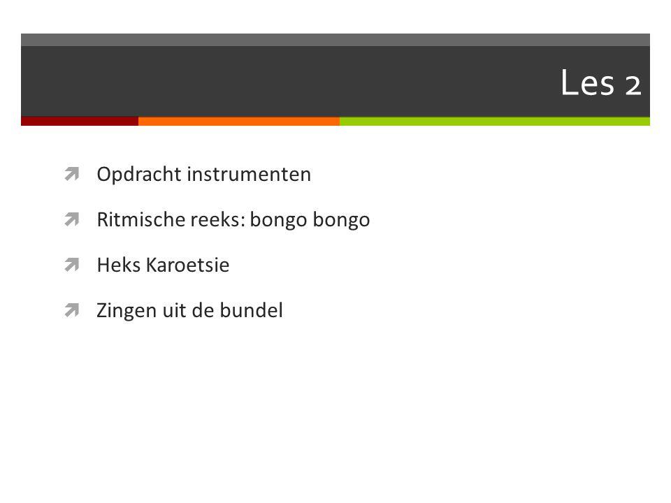 Les 2  Opdracht instrumenten  Ritmische reeks: bongo bongo  Heks Karoetsie  Zingen uit de bundel