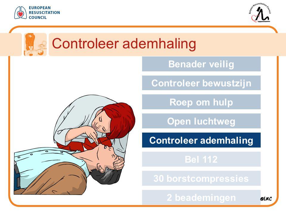 Controleer ademhaling Approach safely Benader veilig Controleer bewustzijn Roep om hulp Open luchtweg Controleer ademhaling Bel 112 30 borstcompressie