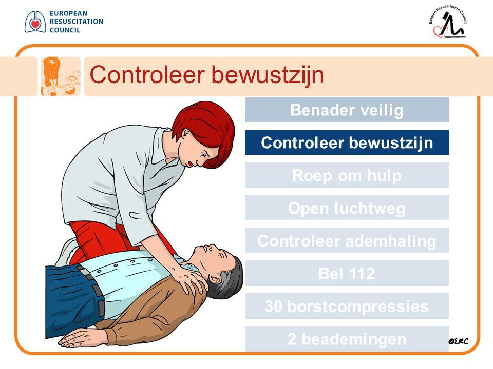 Approach safely Controleer bewustzijn Benader veilig Controleer bewustzijn Roep om hulp Open luchtweg Controleer ademhaling Bel 112 30 borstcompressie