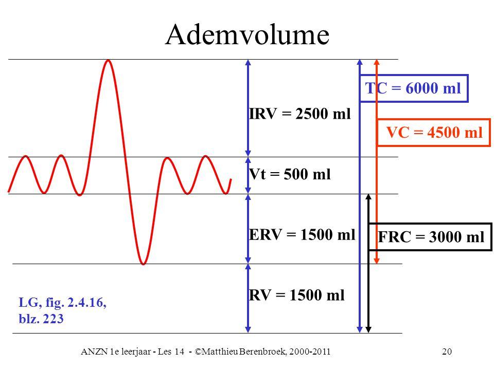ANZN 1e leerjaar - Les 14 - ©Matthieu Berenbroek, 2000-201120 Ademvolume Vt = 500 ml IRV = 2500 ml ERV = 1500 ml RV = 1500 ml TC = 6000 ml VC = 4500 m
