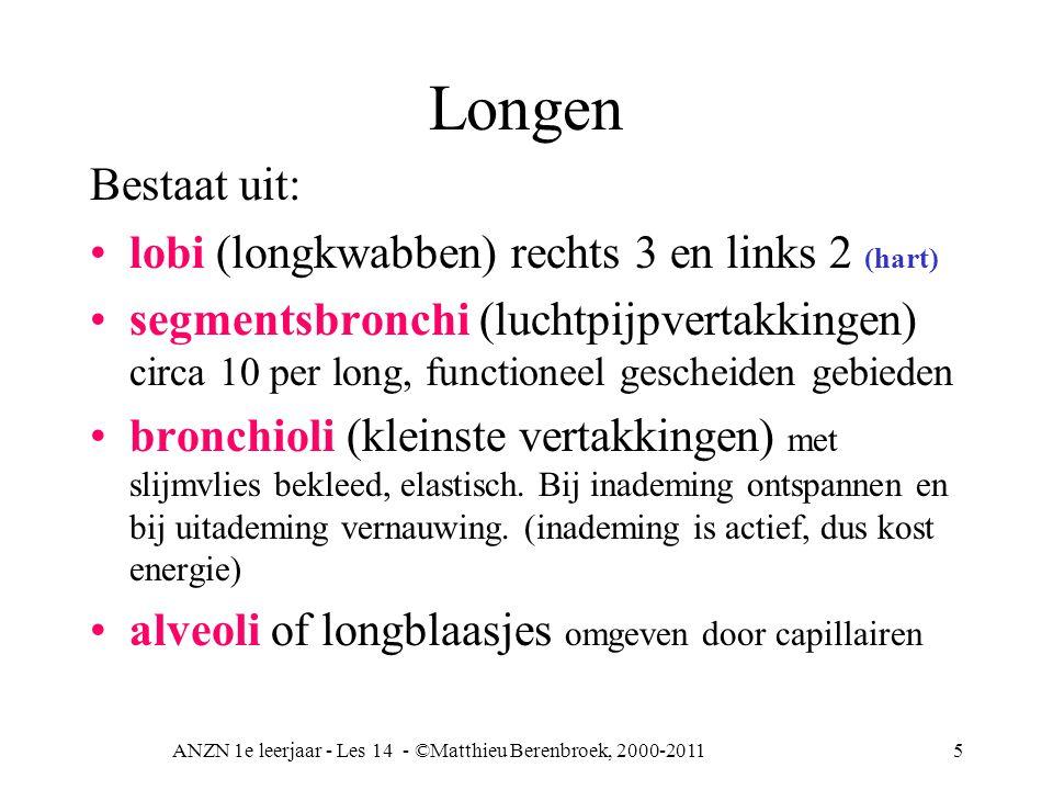 ANZN 1e leerjaar - Les 14 - ©Matthieu Berenbroek, 2000-20116 Bloedvaten van de long Art pulmonalis vertakt zich tot een capillair net rond de alveoli (longblaasje) Art pulmonalis = zuurstofarm => longen => van zuurstof voorzien =>vena pulmonalis = zuurstofrijk (gemengd bloed) => Li harthelft Bloedvoorziening van het longweefsel zelf niet door art pulmonalis, maar door art bronchialis