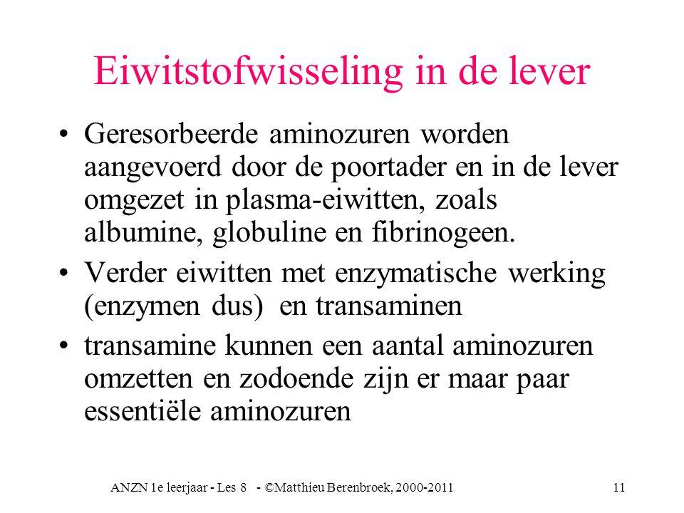 ANZN 1e leerjaar - Les 8 - ©Matthieu Berenbroek, 2000-201111 Eiwitstofwisseling in de lever Geresorbeerde aminozuren worden aangevoerd door de poortader en in de lever omgezet in plasma-eiwitten, zoals albumine, globuline en fibrinogeen.