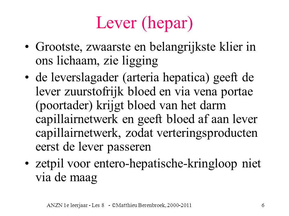 ANZN 1e leerjaar - Les 8 - ©Matthieu Berenbroek, 2000-201117 Galproductie lever Galsecretie (500 –1000ml per dag) onder invloed N X (nervus vagus) door de lever met afvoer via galblaas naar het duodenum.