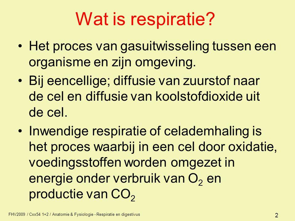 FHV2009 / Cxx54 1+2 / Anatomie & Fysiologie - Respiratie en digestivus 2 Wat is respiratie? Het proces van gasuitwisseling tussen een organisme en zij