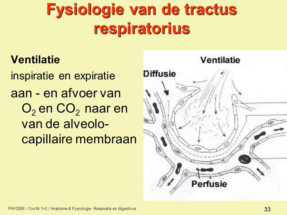 FHV2009 / Cxx54 1+2 / Anatomie & Fysiologie - Respiratie en digestivus 33 Fysiologie van de tractus respiratorius Ventilatie inspiratie en expiratie a