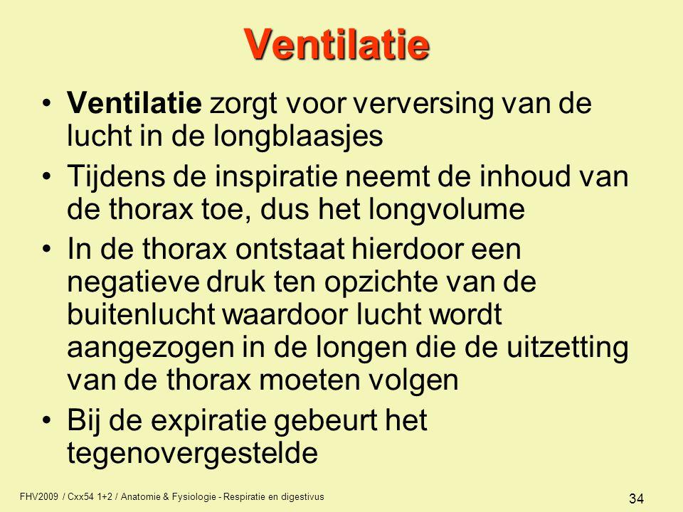 FHV2009 / Cxx54 1+2 / Anatomie & Fysiologie - Respiratie en digestivus 34Ventilatie Ventilatie zorgt voor verversing van de lucht in de longblaasjes T