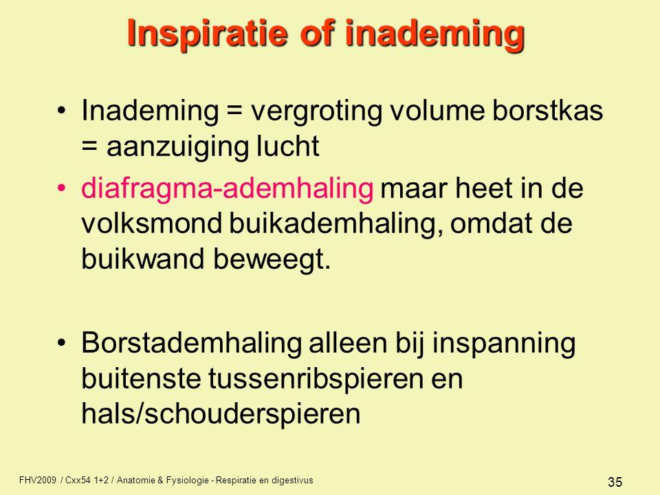 FHV2009 / Cxx54 1+2 / Anatomie & Fysiologie - Respiratie en digestivus 35 Inspiratie of inademing Inademing = vergroting volume borstkas = aanzuiging