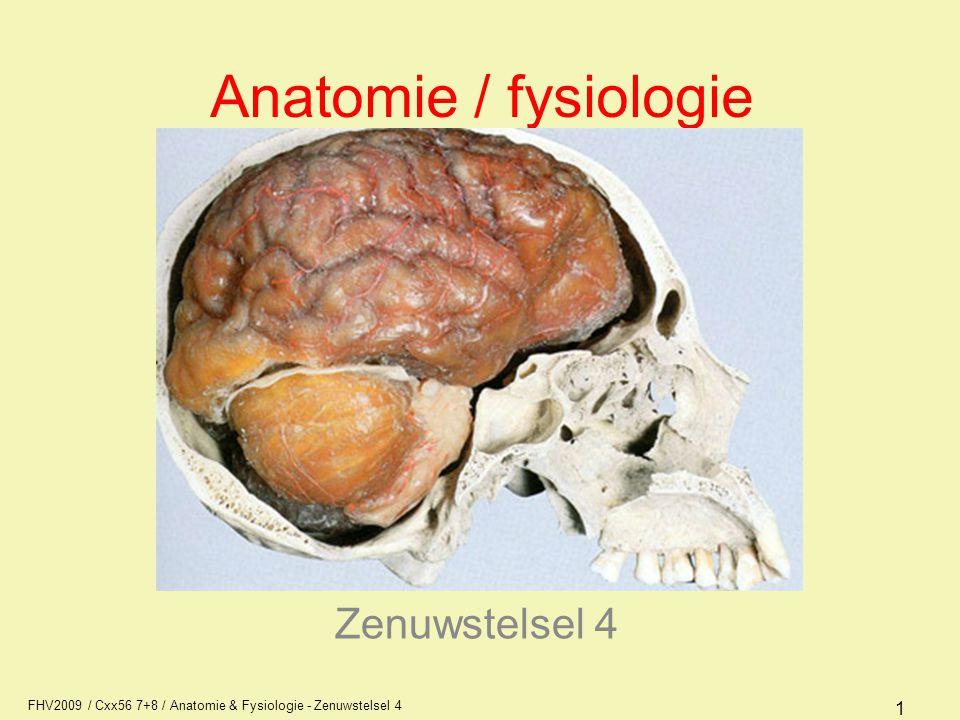 FHV2009 / Cxx56 7+8 / Anatomie & Fysiologie - Zenuwstelsel 4 32 Meningen (hersenvliezen) Dura mater –binnenzijde schedel en wervelkanaal Arachnoïdea –dun vlies met balkjes tussen dura en pia mater, bevat liquor cerebrospinalis Pia mater –vaatvlies van de hersenen en ruggenmerg