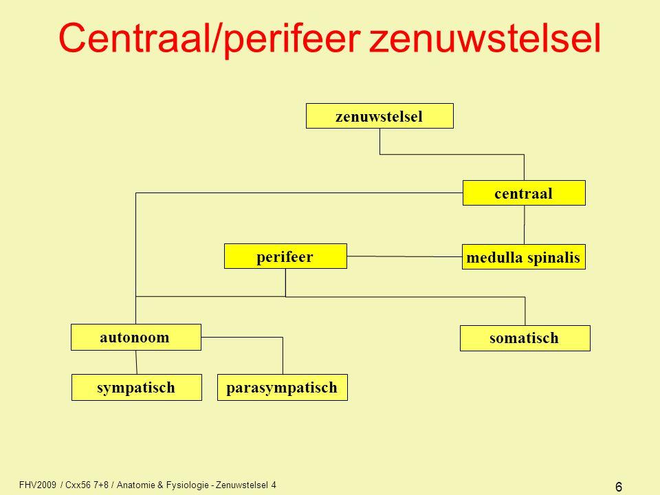 FHV2009 / Cxx56 7+8 / Anatomie & Fysiologie - Zenuwstelsel 4 37 Ventrikelsysteem Pia mater volgt de groeven, de arachnoïdea niet, dus daarom ruimte die wisselend van hoogte is en is gevuld met liquor zijventrikel 4 e ventrikel aquaduct cerebri 3 e ventrikel zijventrikel 3 e ventrikel 4 e ventrikel aquaduct cerebri 3 e ventrikel zijventrikel 4 e ventrikel aquaduct cerebri 3 e ventrikel aquaduct cerebri sinus sagittalis superior plexus choroideus v.d.
