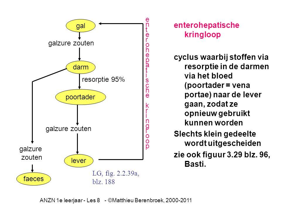 ANZN 1e leerjaar - Les 8 - ©Matthieu Berenbroek, 2000-2011 enterohepatische kringloop cyclus waarbij stoffen via resorptie in de darmen via het bloed (poortader = vena portae) naar de lever gaan, zodat ze opnieuw gebruikt kunnen worden Slechts klein gedeelte wordt uitgescheiden zie ook figuur 3.29 blz.