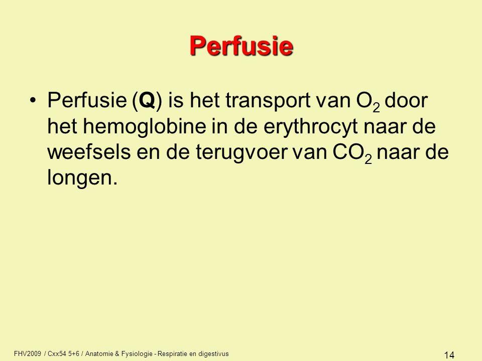 FHV2009 / Cxx54 5+6 / Anatomie & Fysiologie - Respiratie en digestivus 14 Perfusie Perfusie (Q) is het transport van O 2 door het hemoglobine in de er