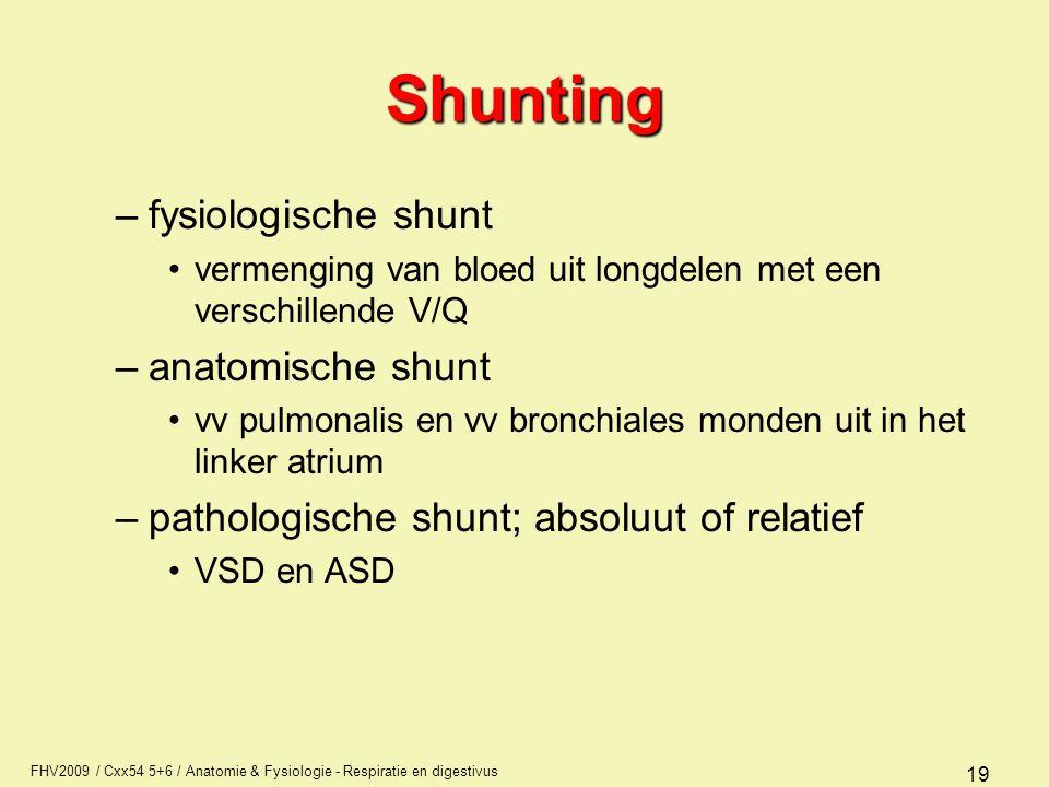 FHV2009 / Cxx54 5+6 / Anatomie & Fysiologie - Respiratie en digestivus 19 Shunting –fysiologische shunt vermenging van bloed uit longdelen met een ver