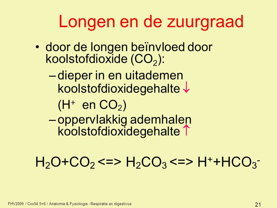 FHV2009 / Cxx54 5+6 / Anatomie & Fysiologie - Respiratie en digestivus 21 Longen en de zuurgraad door de longen beïnvloed door koolstofdioxide (CO 2 )