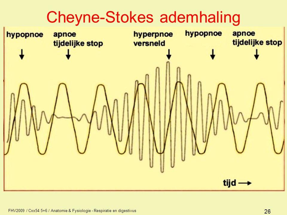 FHV2009 / Cxx54 5+6 / Anatomie & Fysiologie - Respiratie en digestivus 26 Cheyne-Stokes ademhaling