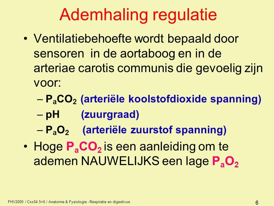 FHV2009 / Cxx54 5+6 / Anatomie & Fysiologie - Respiratie en digestivus 6 Ademhaling regulatie Ventilatiebehoefte wordt bepaald door sensoren in de aor