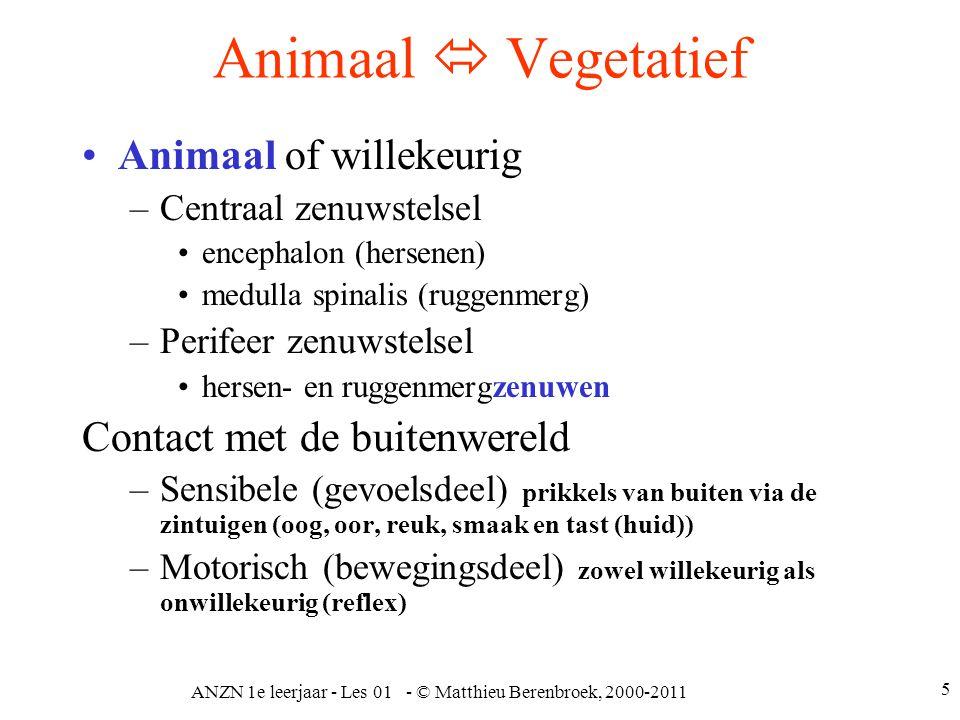 ANZN 1e leerjaar - Les 01 - © Matthieu Berenbroek, 2000-2011 5 Animaal  Vegetatief Animaal of willekeurig –Centraal zenuwstelsel encephalon (hersenen