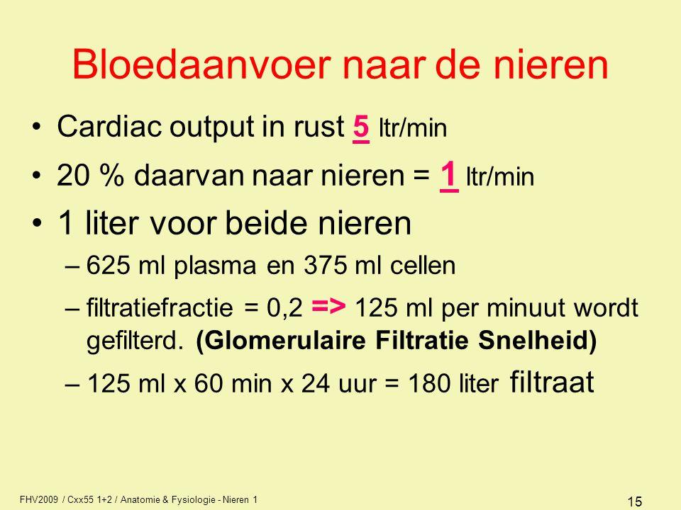 FHV2009 / Cxx55 1+2 / Anatomie & Fysiologie - Nieren 1 15 Bloedaanvoer naar de nieren Cardiac output in rust 5 ltr/min 20 % daarvan naar nieren = 1 lt
