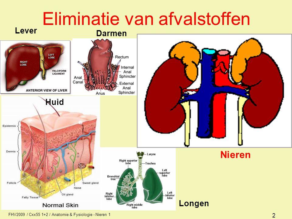 FHV2009 / Cxx55 1+2 / Anatomie & Fysiologie - Nieren 1 2 Eliminatie van afvalstoffen Lever Darmen Huid Longen Nieren