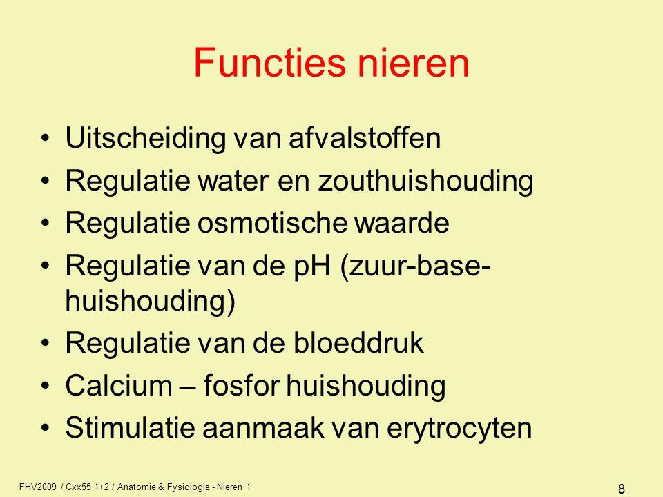 FHV2009 / Cxx55 1+2 / Anatomie & Fysiologie - Nieren 1 8 Functies nieren Uitscheiding van afvalstoffen Regulatie water en zouthuishouding Regulatie os