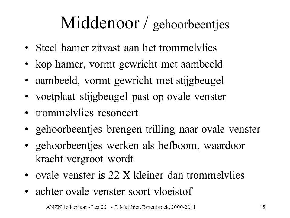 ANZN 1e leerjaar - Les 22 - © Matthieu Berenbroek, 2000-201118 Middenoor / gehoorbeentjes Steel hamer zitvast aan het trommelvlies kop hamer, vormt ge