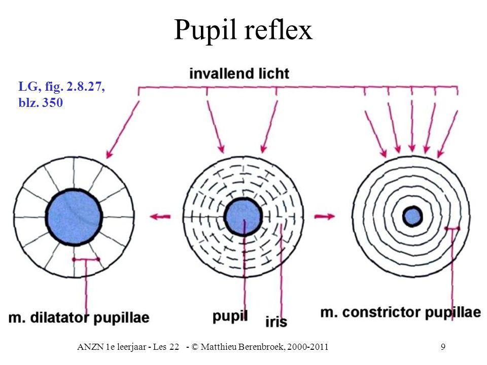 ANZN 1e leerjaar - Les 22 - © Matthieu Berenbroek, 2000-20119 Pupil reflex LG, fig. 2.8.27, blz. 350
